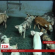 На Тернопільщині селяни заблокували свинокомплекс (ВІДЕО)