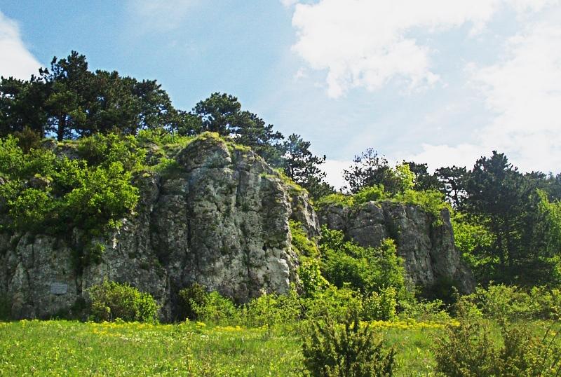 Медобори – мальовничі гори Тернопілля (ФОТО)   Терноград