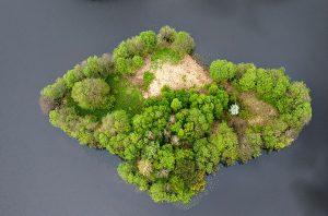 Острівець в озері, Польща