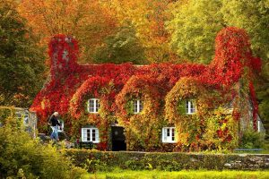 Будиночок в Уельсі