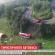 <strong>В аварії у Польщі загинули тернополянин і дві жінки з Києва (ВІДЕО)</strong>
