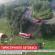 """ДТП з українцями в Польщі: розслідування про горезвісну турагенцію """"Аккорд-тур"""" (ВІДЕО)"""
