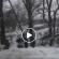 <strong>На Тернопільщині біля річки автомобіль перекинувся у кювет (ВІДЕО)</strong>