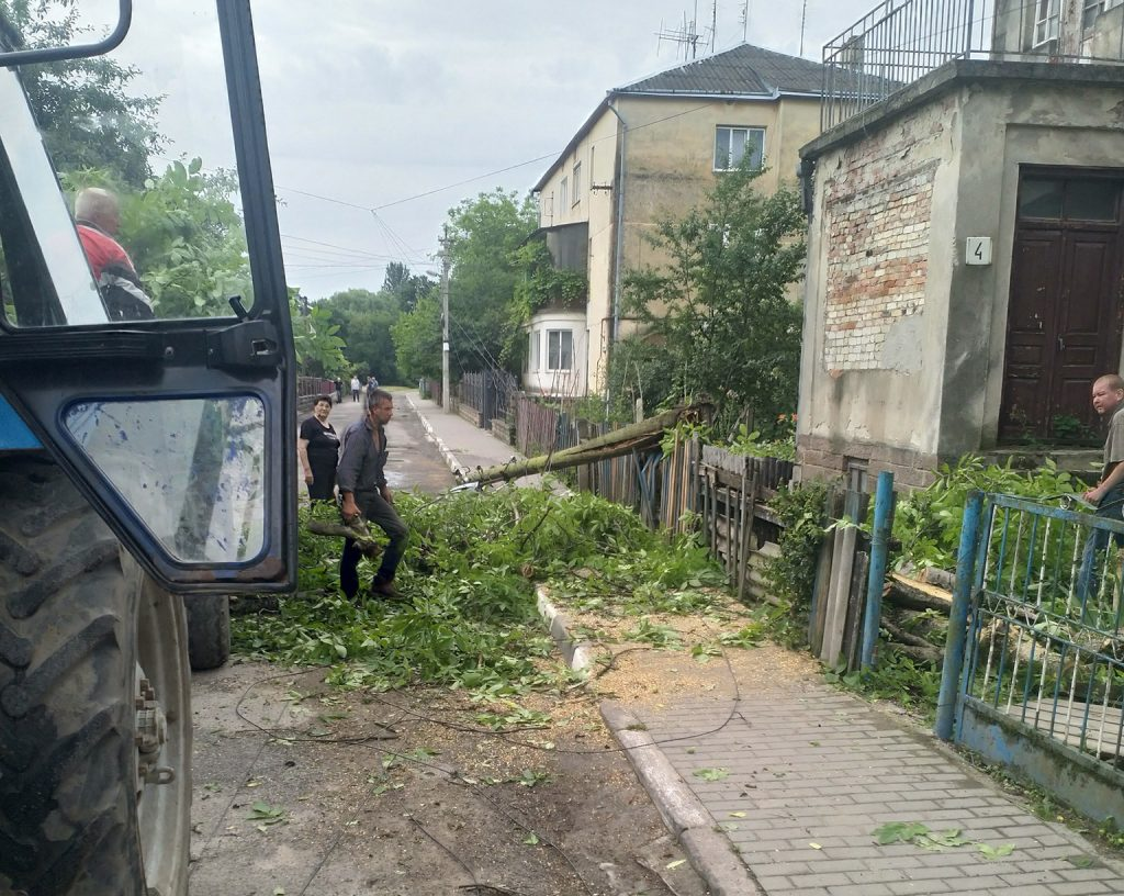 повалені дерева, тернопільські новини