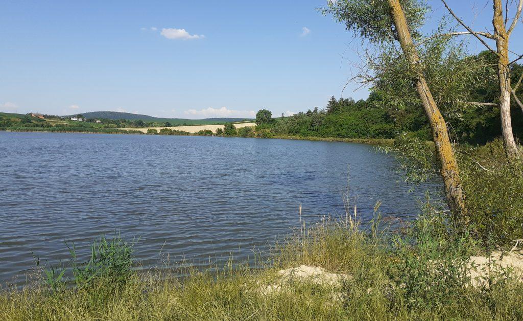 сільський ставок, тернопільські новини