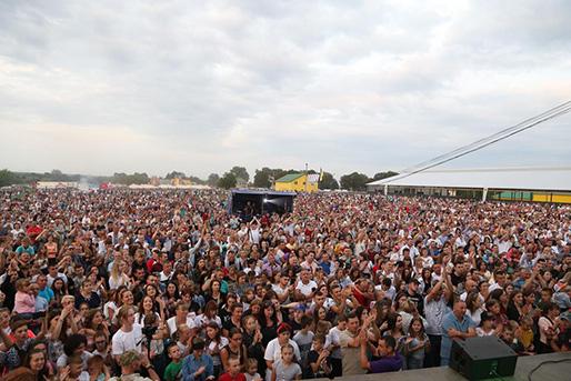 фестиваль Фест Господар у Денисові