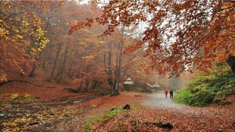 погода осінь Тернопіль