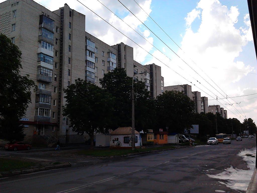 Тернопіль, вул. Л. Українки