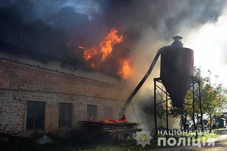 пожежа на Микулинецькій